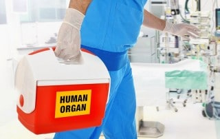 A medically gloved hand of a man carries a life saving human organ in a cooler to a patient in great need. After an organ transplant you'll have good success with dental implants.